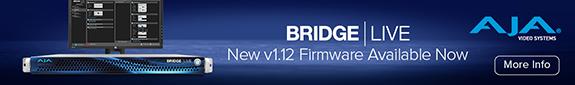 AJA Bridge top Strip