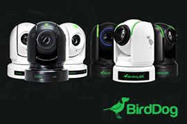 BirdDog Launches New P400 & P4K PTZ Bundle Promos